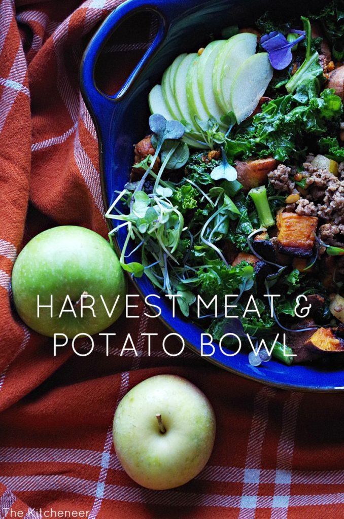 harvest_meat_potato_bowl4