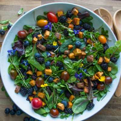 Veil of the Fairies Salad- A Whole30 vegetarian salad recipethat bursting with ripe Spring berries, dandelion greens, and topped with a delicious blueberry lemon basil beet dressing.